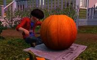 かぼちゃを彫るクラーク